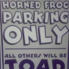 parking for k-state available with room to tailgate - last post by BoydAveFrogFan
